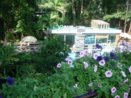 Kafe kebun binatang