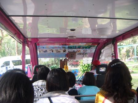 Tramcar kebun binatangP
