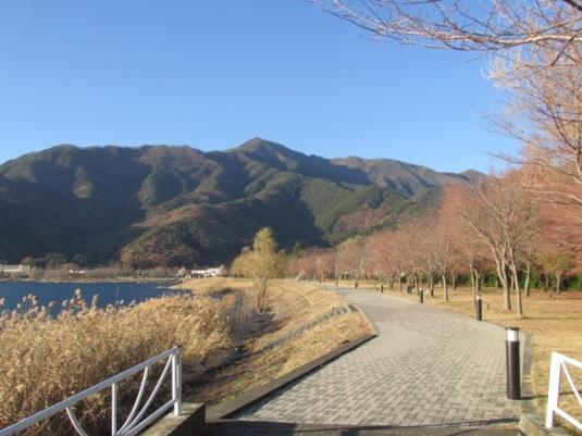 kawaguchiko-winter2013-07