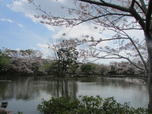 kamakura2014-07