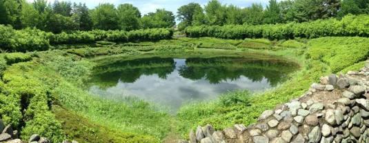 Kolam kecil yang terasa misterius di tengah-tengah taman.